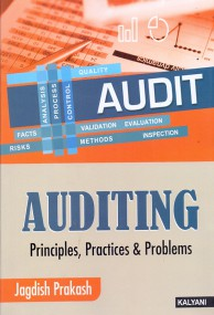 Auditing Principles, Practice and Problems